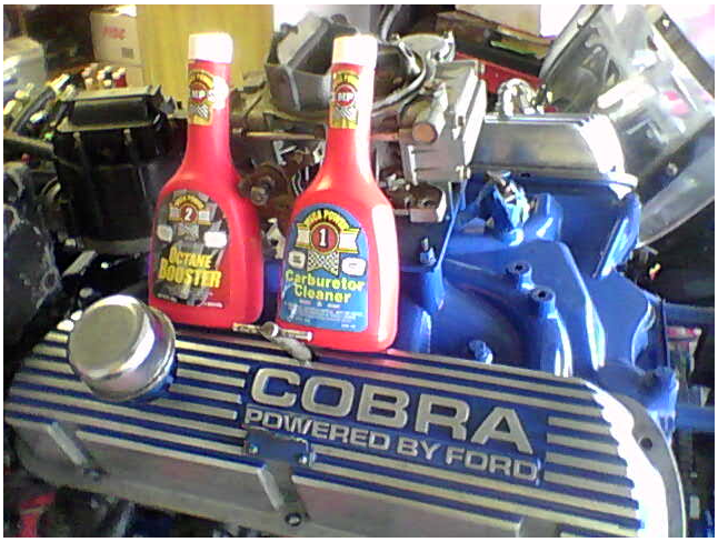 Mustang Engine cobra kitted