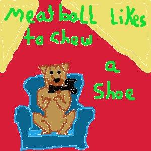 Meatball's shoe